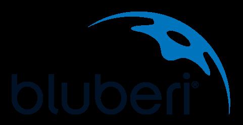 Bluberi_Logo